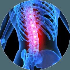 Spine chiropractor regina